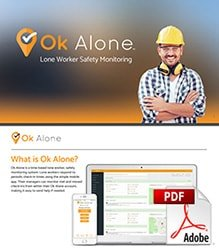 What is Ok Alone pdf