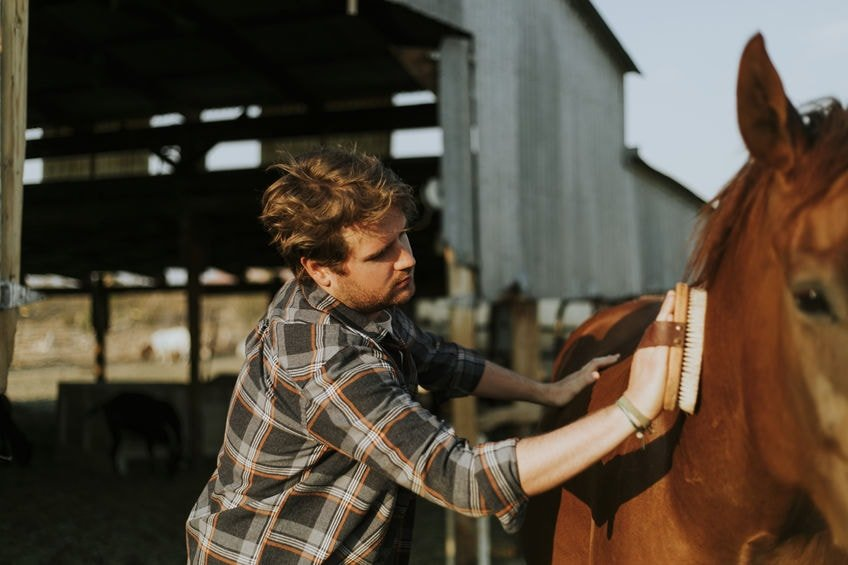 How Lone Working effects Grooms, Stable Hands and Farriers in North America